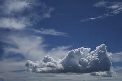 Загадочный дракон появился в небо стоковая фотография rf