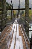 Загадочный мост Природа Лес Стоковая Фотография