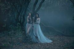 Загадочная дама с длинной прогулкой черных волос в пугающих древесинах Стоковая Фотография