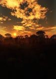 Загадочная вертикаль захода солнца ландшафта иллюстрация вектора