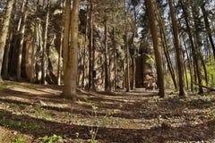 Загадочная горная порода в зоне kraj Machuv долины Peklo весной в чехии Стоковые Изображения
