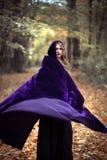 Загадочная девушка в накидке в лесе осени Стоковое Изображение