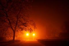 Загадочная пустая тропа в тумане утра в красном оранжевом тоне Стоковое Фото