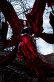 Загадочные женщина или ведьма в длинном красном платье стоя в темном лесе с тканью летания Стоковые Изображения RF