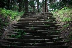 Загадочные шаги Стоковое фото RF