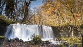 Загадочный поток Oirase пропуская через лес осени внутри к Стоковые Фото