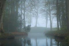 Загадочный пруд Стоковые Фото