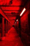Загадочный тоннель подземелья Стоковое Фото