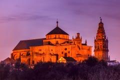 Загоренная большая мечеть Mezquita, Cordoba, Испания стоковые фотографии rf