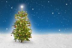 Загоренная звезда на рождественской елке Стоковые Фото