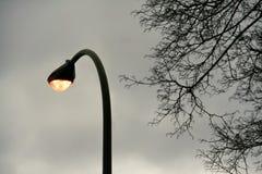 Загоренная светлая электрическая лампа на улице в twilight времени/свете лампы на поляке на twilight взгляде предпосылки неба Стоковое Фото
