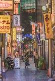 Загоренные знаки освещая узкий маленький переулок улицы солнечности центральной соединяя восточный выход станции Ikebukuro стоковая фотография