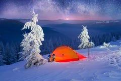 Загоренный лес зимы в Карпатах Стоковое Изображение