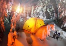 Загоренный лес зимы в Карпатах Стоковое Изображение RF