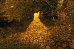 Загоренный путь ночи Стоковая Фотография RF