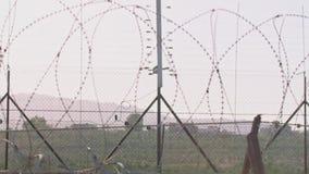 Загородка границы между Израилем и западным берегом загородка колючей проволоки электронная сток-видео