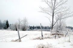 загородка забытая длиной Стоковые Фото