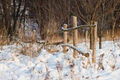 Загородка зимы Стоковое фото RF