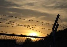 Загородка колючей проволоки на заходе солнца стоковое фото
