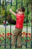 загородка мальчика взбираясь Стоковое фото RF