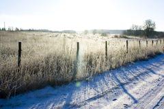 загородка около древесины зимы дороги сельской Стоковые Изображения RF