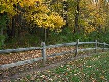 загородка осени деревянная Стоковые Фотографии RF