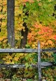 загородка осени стоковое изображение