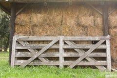 загородка сельская стоковые фото