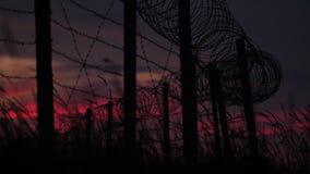 Загородка с колючей проволокой и травой на предпосылке пасмурного красно-голубого неба сток-видео