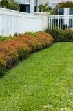 загородка цветет белизна Стоковая Фотография