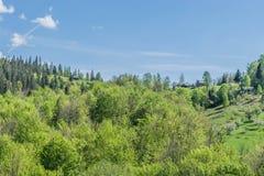 Загородные дома на холме около леса Стоковые Фотографии RF