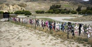 Загородка бюстгальтера долины Cardrona Стоковое Изображение RF