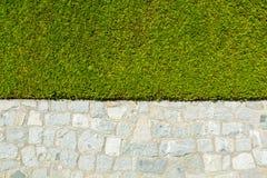 загородка естественная Стоковые Изображения RF