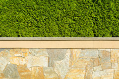 загородка естественная Стоковое Изображение RF