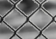 Загородка звена цепи с снежком Стоковые Изображения