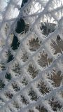 Загородка изморози Стоковые Фотографии RF