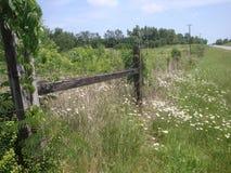 Загородка и поле страны Стоковая Фотография