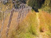 Загородка и путь стоковая фотография rf
