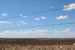Загородка колючей проволоки, Swartland, западная накидка, Южная Африка Стоковые Фото