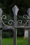 Загородка Оксфорд черного металла спиковая чугунная Стоковые Изображения RF