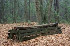 Загородка по пересеченной местностей скача Стоковые Изображения RF