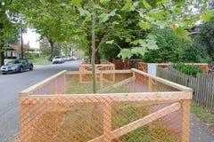 Загородка предохранения от дерева Стоковое Изображение RF