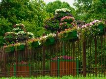 загородка предпосылки цветет вектор картины иллюстрации безшовный Стоковое Фото