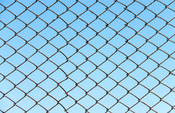Загородка провода металла на небе предпосылки голубом Стоковая Фотография