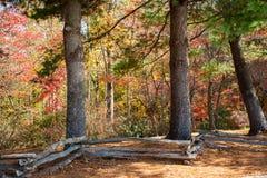 Загородка разделенного рельса и листья осени стоковая фотография rf