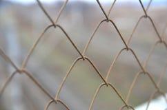 Загородка решетки звена цепи Стоковые Изображения