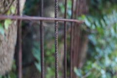 загородка ржавая Стоковые Изображения RF