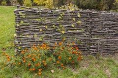 Загородка сделанная из хворостин Стоковое Фото