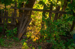 Загородка стоковое изображение