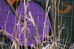 Загородка 1 Стоковые Фото